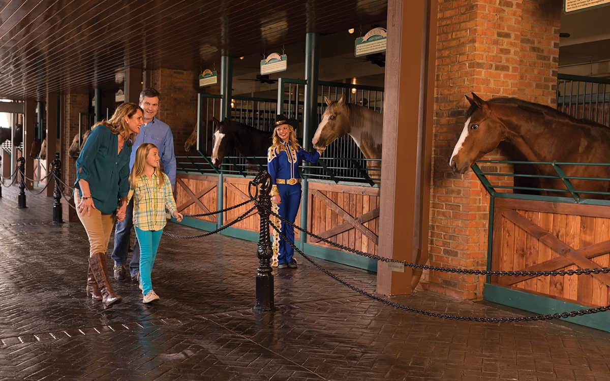 World Famous Horse Walk at Dolly Parton's Dixie Stampede